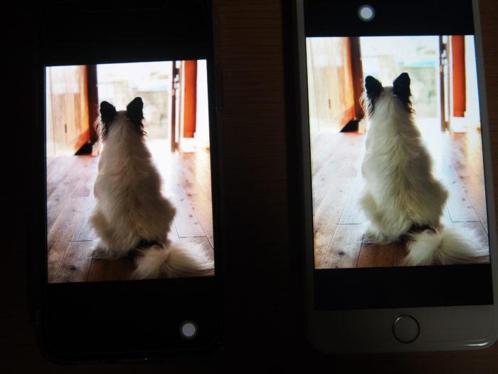 iPhoneXとiPhone6plus