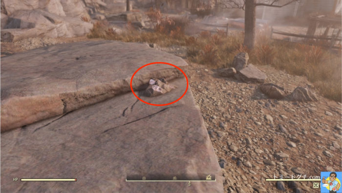 Fallout76 ソロモンの池