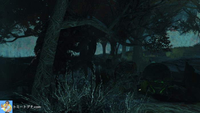 Fallout76 高原の沼地