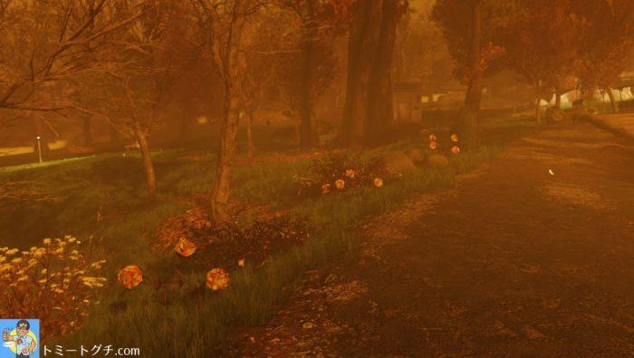 Fallout76 蛍光溶剤