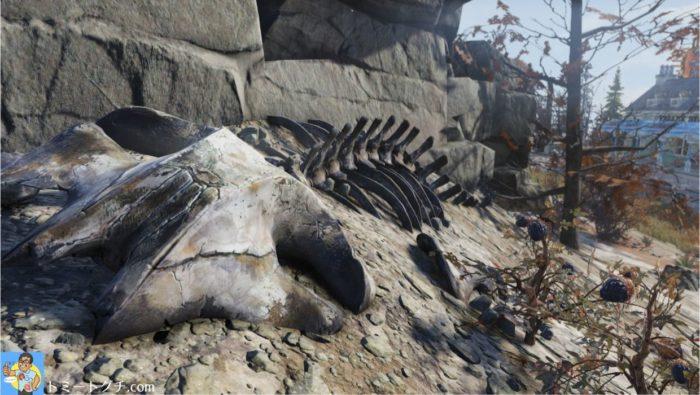 Fallout76 化石 場所