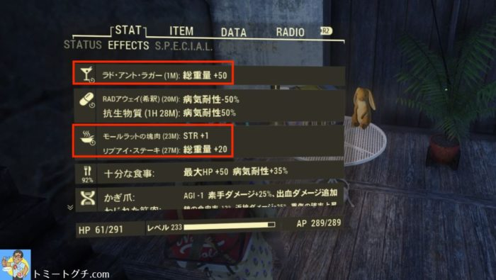 Fallout76 総重量底上げ
