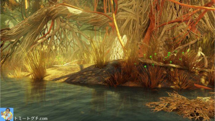 Fallout76 節くれだった巨木の生えた浅瀬