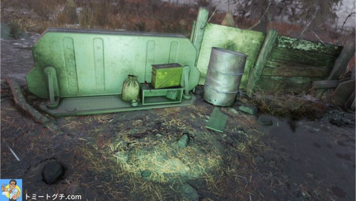 Fallout76 ザ・ソーン