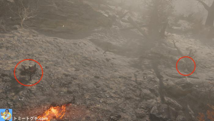 Fallout76 積灰の山南の荒野