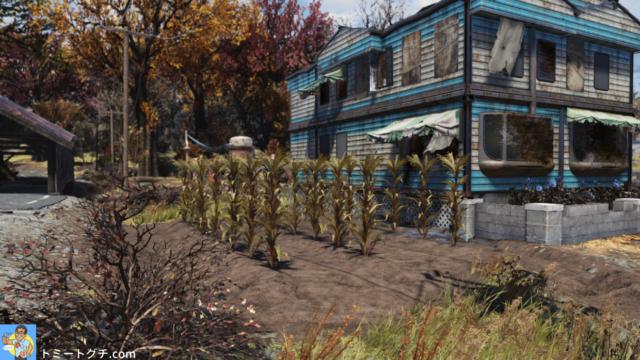 Fallout76 ザ・ウェイワード